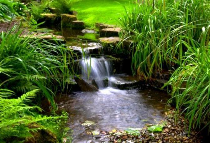 Strumień i kaskada wodna w ogrodzie
