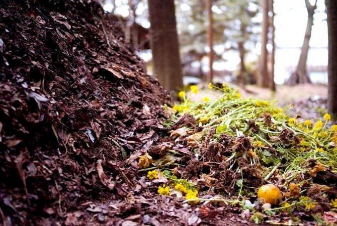 Kompost  jak zrobić kompost?