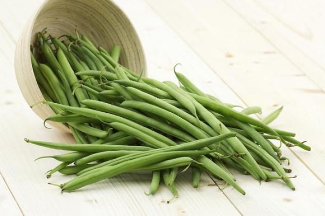 Uprawa fasoli szparagowej