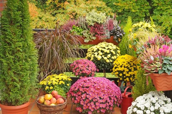 Balkon w barwach jesieni