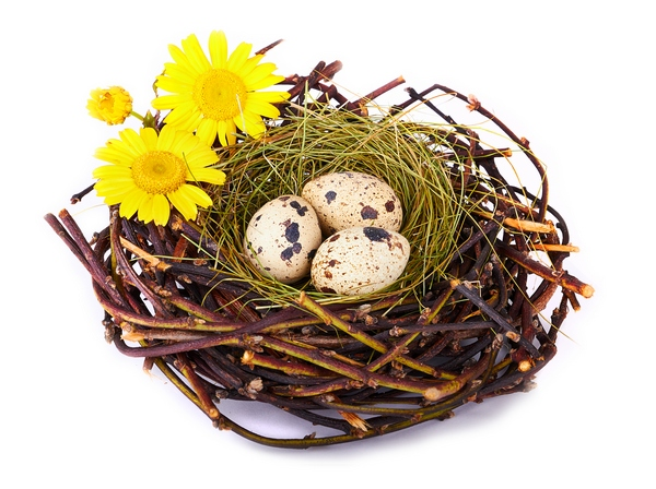 Jajka a dekoracje wielkanocne