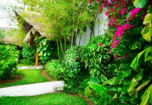 Ogród egzotyczny