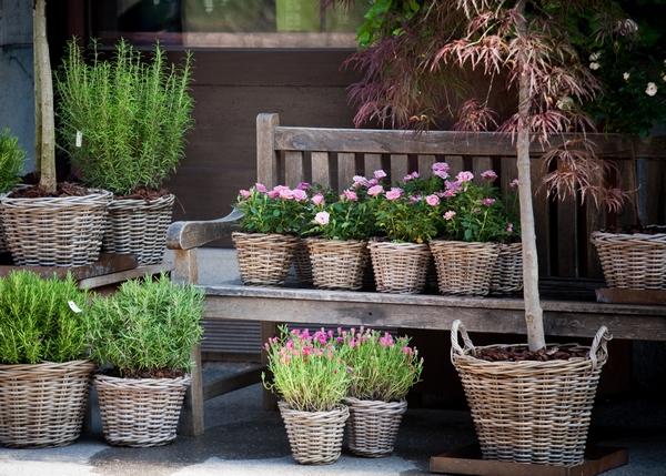 Rośliny ozdobne w koszach wiklinowych