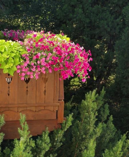 Słoneczny balkon