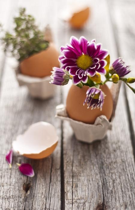 Wydmuszka pełna kwiatów