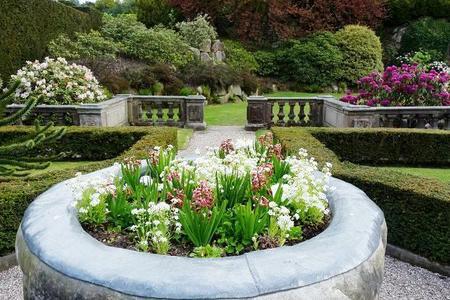 Projektowanie ogrodu krok po kroku