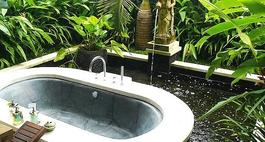 Rośliny do łazienki – jakie kwiaty najlepsze są do łazienki?