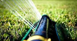 System nawadniający w ogrodzie – zapomnij o codziennym podlewaniu
