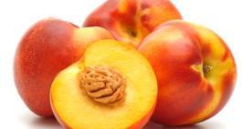 Drzewa owocowe – nektarynki