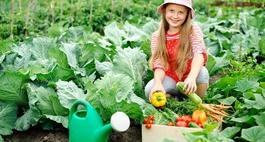 Mały ogródek warzywny