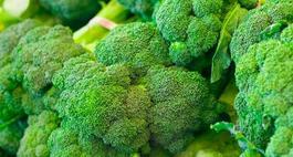 Brokuł - odmiany, pielęgnacja, uprawa
