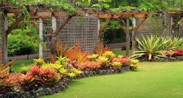 Zdjęcia ogrodów