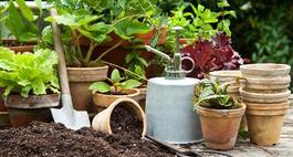 Torf ogrodniczy