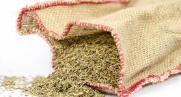 Jak zrobić zioła prowansalskie – podajemy skład