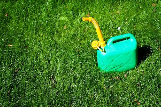 Wysiew trawy