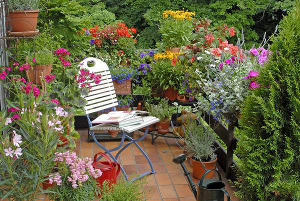 Ogr d na balkonie - Terras arrangement ...