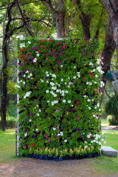 Ogr d wertykalny tajemnicze zielone ciany for Terrazzi con piante e fiori