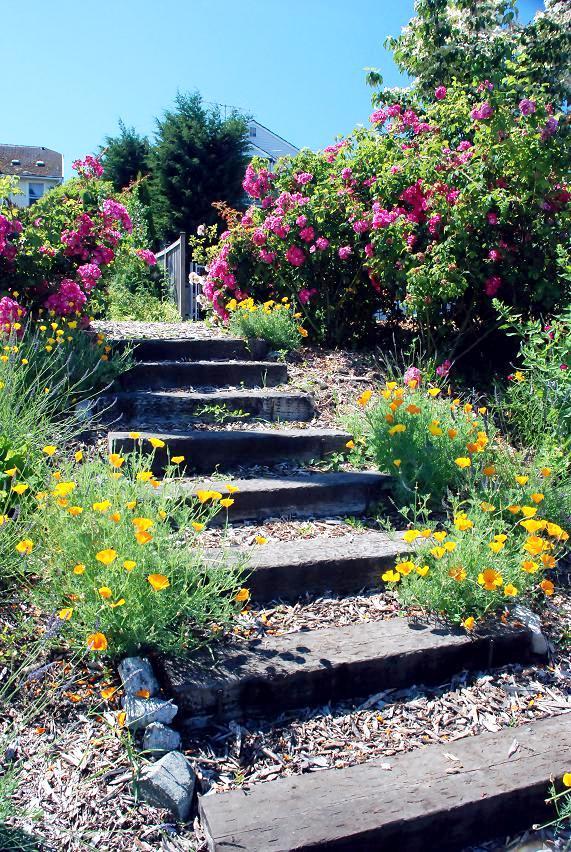 Projektowanie ogrodu krok po kroku for Spring hill nursery garden designs