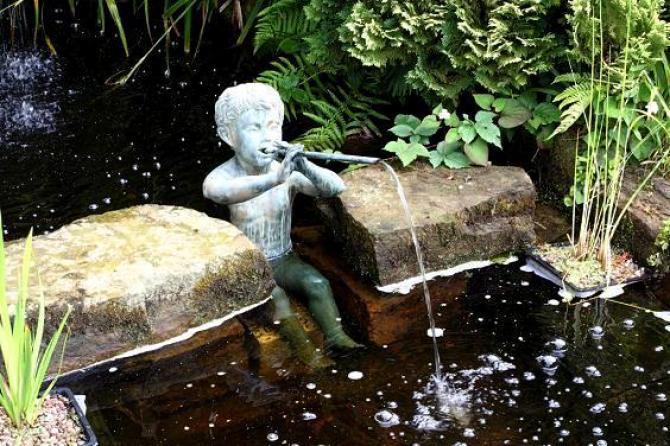 Woda w ogrodzie  życie w ogrodzie