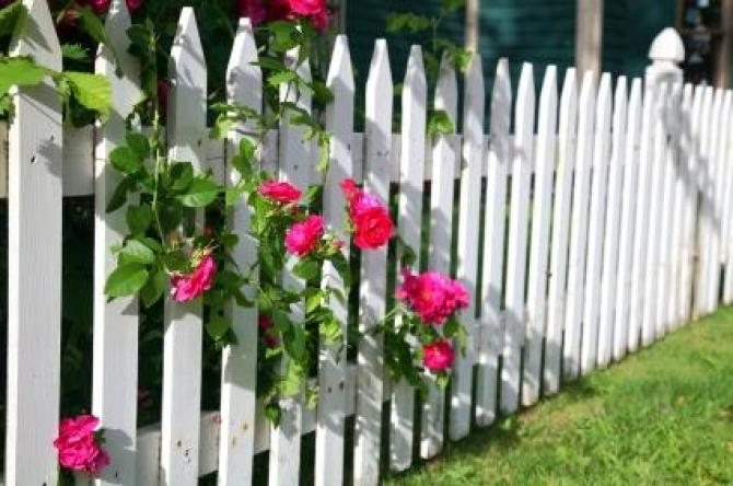 Płotki ogrodowe