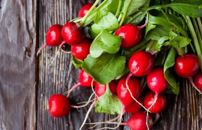 Rzodkiewka  uprawa, odmiany i właściwości