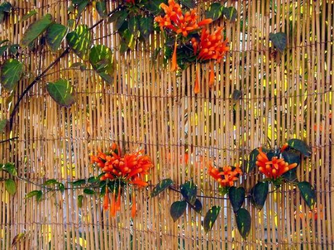 Maty ogrodzeniowe  rodzaje, zastosowanie i montaż