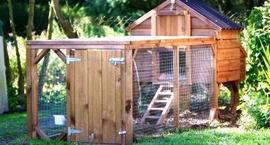 Kojec dla psa w ogrodzie