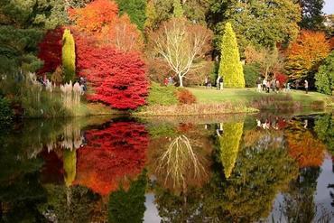 Jesień w ogrodzie -  jesienne prace w ogrodzie