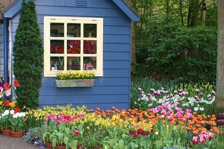 Domek drewniany w ogrodzie