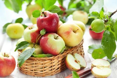 Jabłoń.