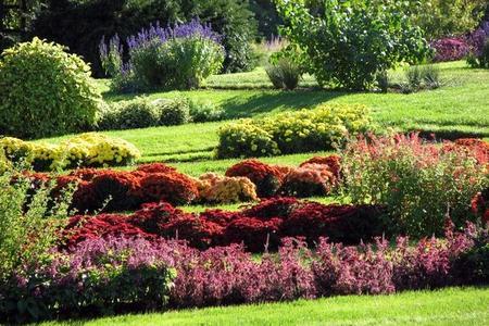 Kompozycje ogrodowe