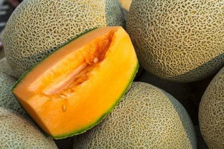 Melon - uprawa i odmiany
