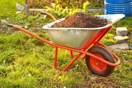 Kompost z trawy