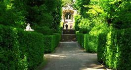 """Żywopłot, naturalna """"ściana"""" ochronna w naszych ogrodach"""