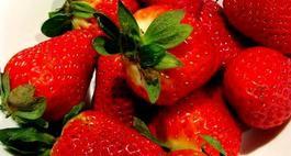 Odmiany truskawek