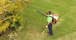 Opryskiwacze ogrodowe