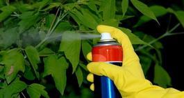 Środki ochrony roślin - jak je bezpiecznie stosować