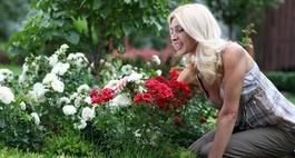 Szczepienie róż