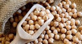 Ciecierzyca – uprawa, wartość odżywcza i zastosowanie