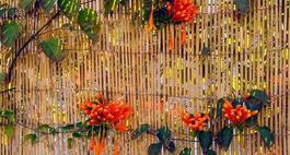 Maty ogrodzeniowe – rodzaje, zastosowanie i montaż