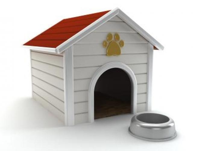 Small Plastic Dog House
