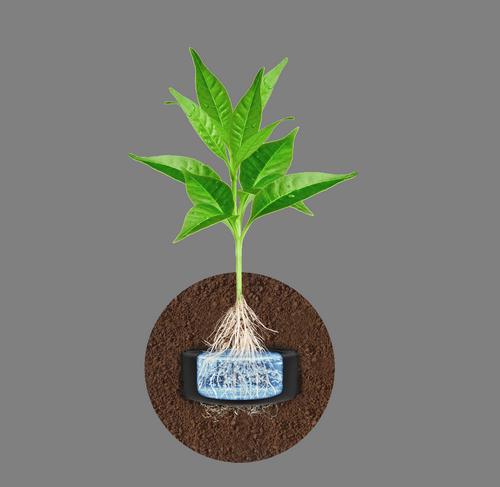 Hydrobox – Prosty sposób na innowacyjne nawadnianie