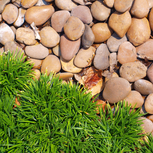Kamień naturalny - polny