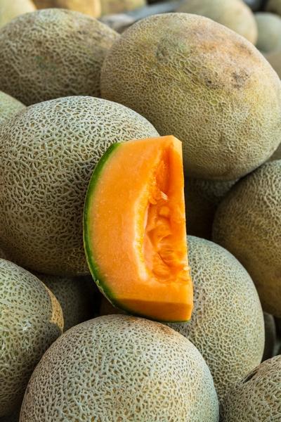 Melon uprawa i odmiany