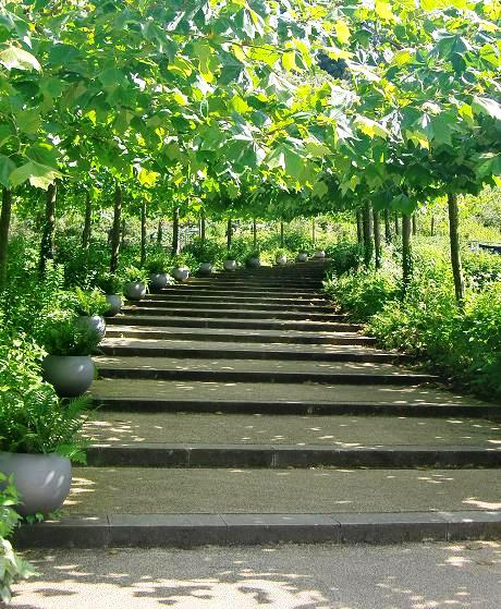 Nowoczesny ogród