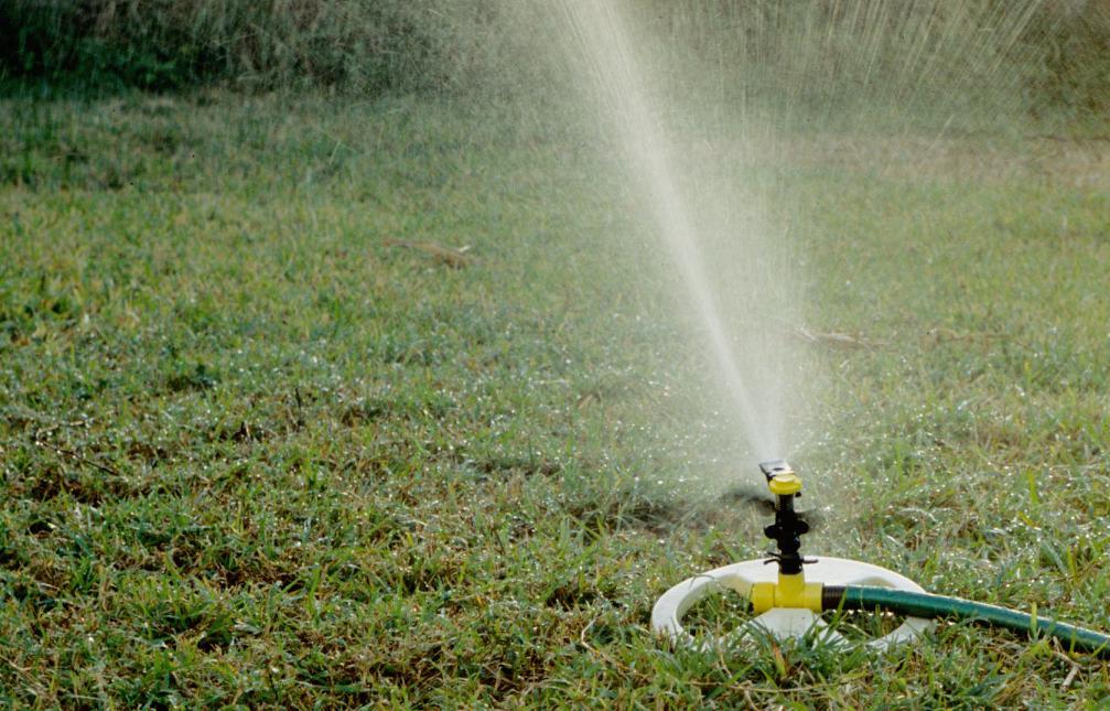 podlewanie roślin ogrodowych