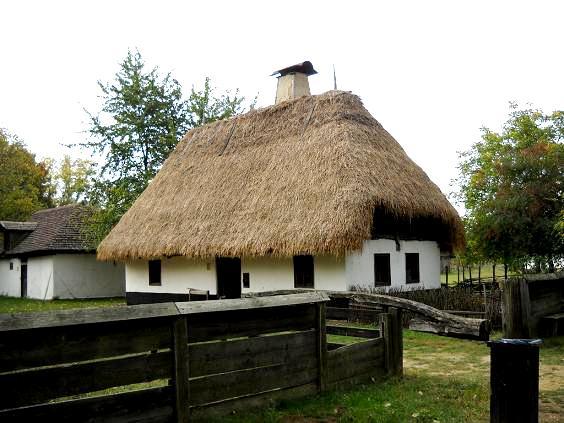 słomiane dachy