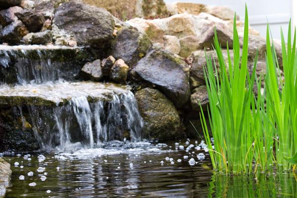 kaskada wodna w ogrodzie