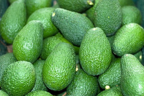 Uprawa awokado - owoce