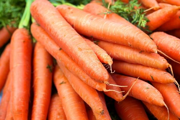 Warzywa - marchew